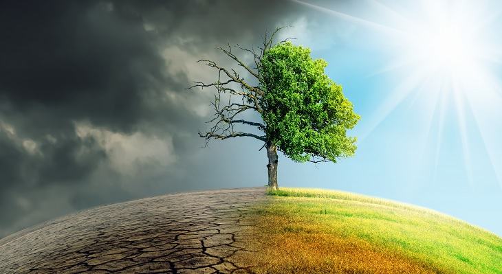 Projekt ANLIN: Ausbilder und Auszubildende werden zu Nachhaltigkeits-Experten
