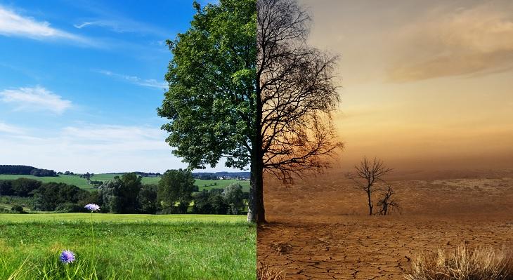 Azubis sorgen für mehr Klimaschutz im Betrieb