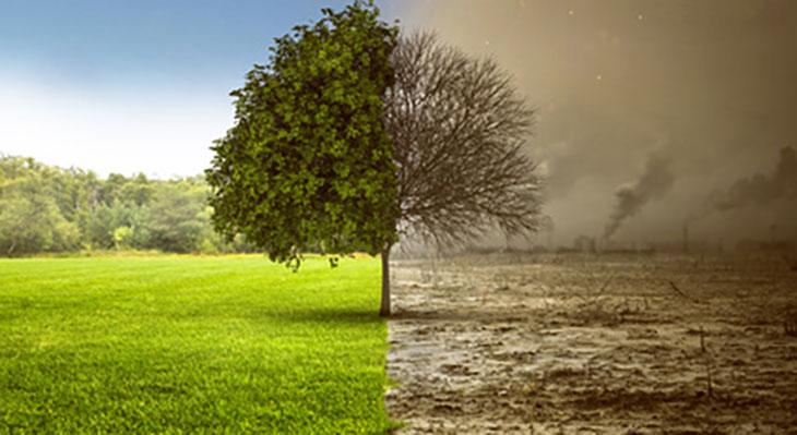 Fortbildung zum Klimaschutzplan 2050