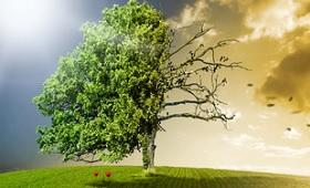 Energie-Scouts 2018: Auszubildende beweisen Kreativität beim Klimaschutz
