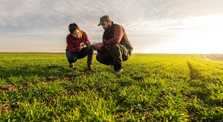Studie zur Zukunft der agrarischen Berufsbildung