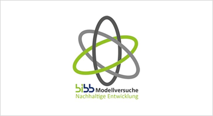BIBB-Projekte in der Green Economy
