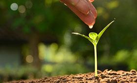 Bildung für nachhaltige Entwicklung: Best-Practice-Beispiele gesucht