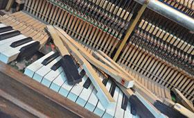 Ausbildung für Klavier- und Cembalobauer/-innen modernisiert